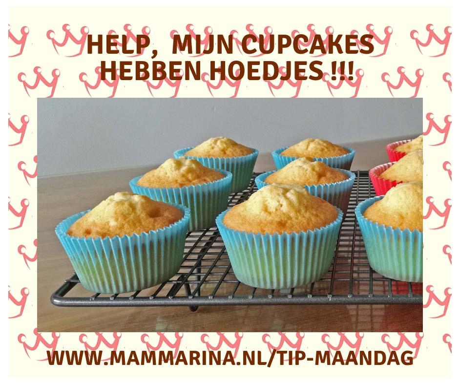 Mammarina Deurne TIP Maandag hoedjes cupcakes 2019